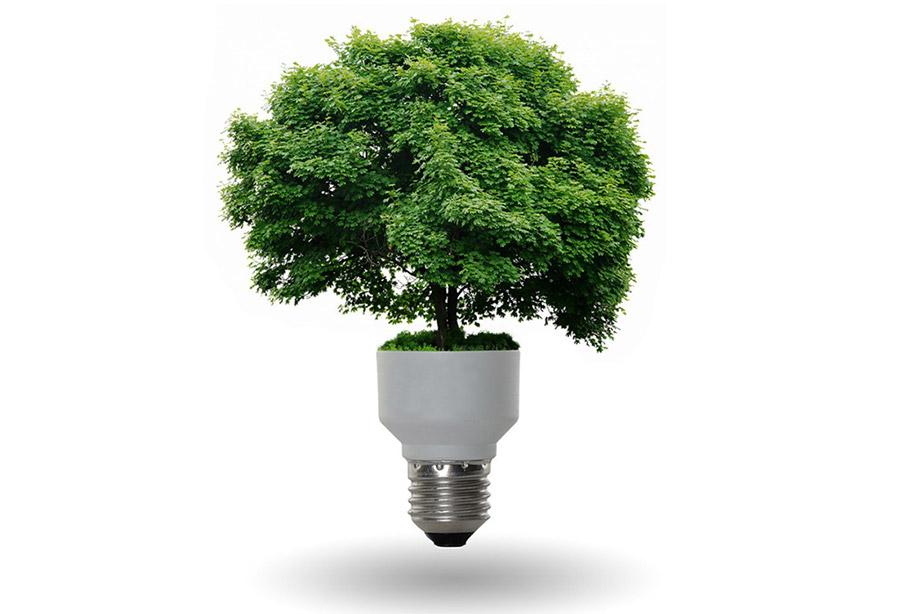 ¿Qué es Carbono Neutralidad?